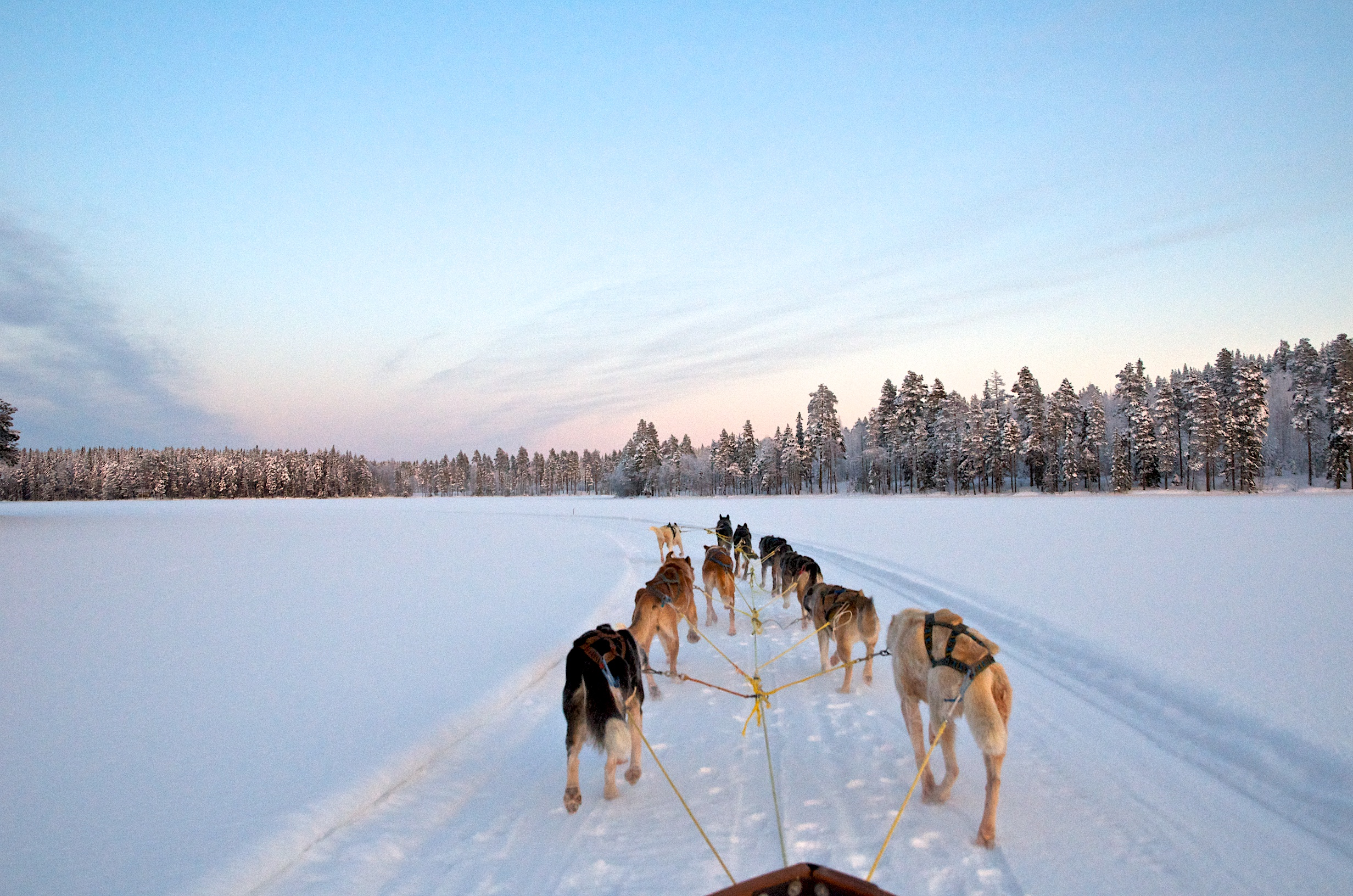 2021_Schwedisch Lappland 6